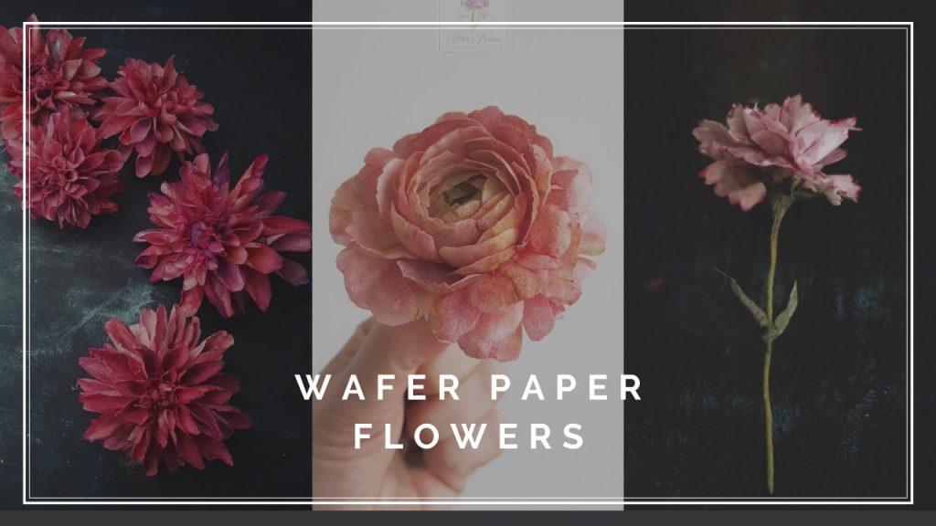AkademiaTortu Beata Tomasiewicz Dalia Ranunculous Carnation Wafer Paper Flower