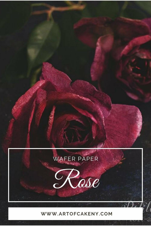 AkademiaTortu Beata Tomasiewicz Wafer paper rose pin