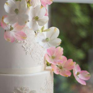 Gum Paste Dogwood Flower