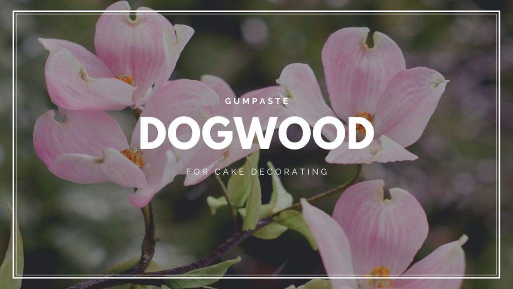 EN AkademiaTortu Gumpaste Dogwood