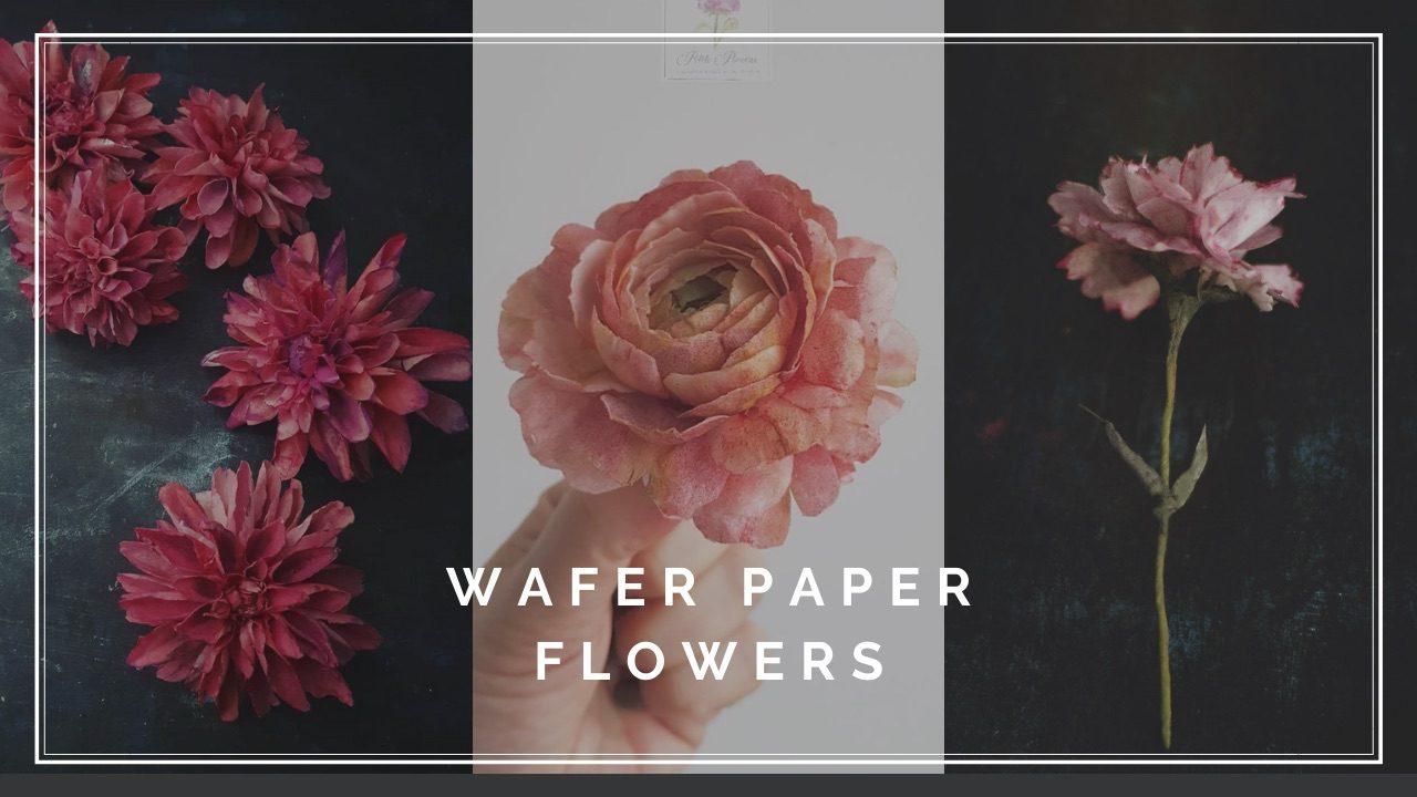 AkademiaTortu-Beata_Tomasiewicz-Dalia-Ranunculous-Carnation-Wafer-Paper_Flower