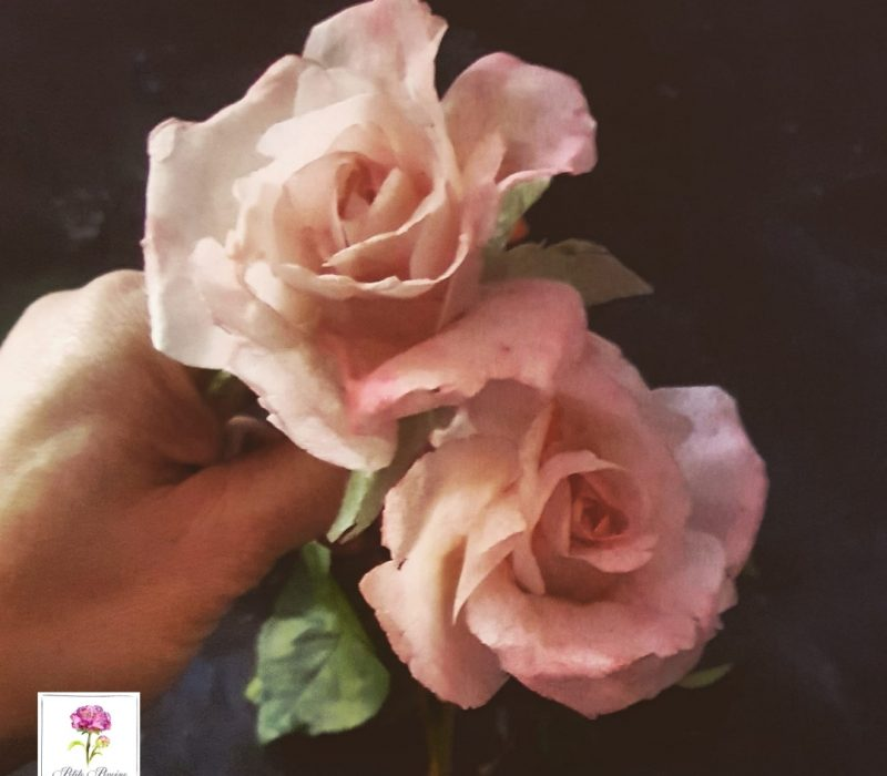 AkademiaTortu-Beata_Tomasiewicz-Wafer_paper_rose-hydrangea-pansy-sq-3